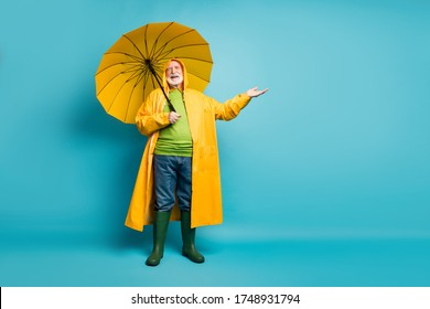 Full length body size view of his he nice cheerful cheery grey-haired man wearing yellow topcoat enjoying sunny weather spending day isolated over bright vivid shine vibrant blue color background