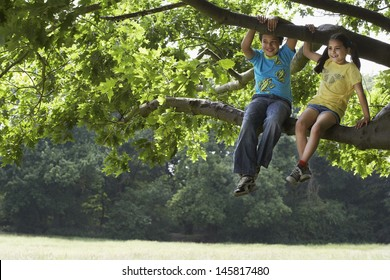 Full length of happy brother and sister relaxing on tree branch
