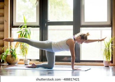 Full length portrait of beautiful young woman working out at home in living room, doing yoga or pilates exercise on mat. Bird-dog or kneeling opposite arm and leg extension (chakravakasana). Side view