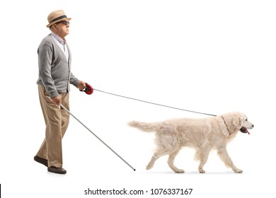 Full length profile shot of a blind mature man walking with the help of a dog isolated on white background