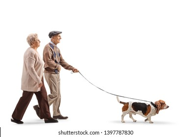 Full length profile shot of a senior couple walking a basset hound dog isolated on white background