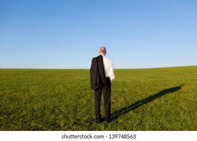 Full length rear view of mature businessman standing on grassy field against clear sky