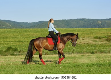 Full length shot of happy young woman enjoy horseback riding at meadow.