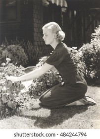 Full length side view of young woman pruning plants in garden