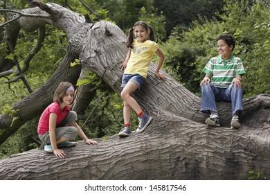 Full length of three little friends relaxing on fallen tree