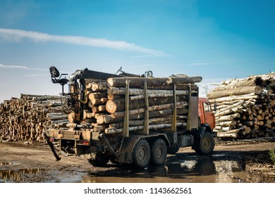 Full load truck carries wooden logs. Logging, storage and transportation of wood.