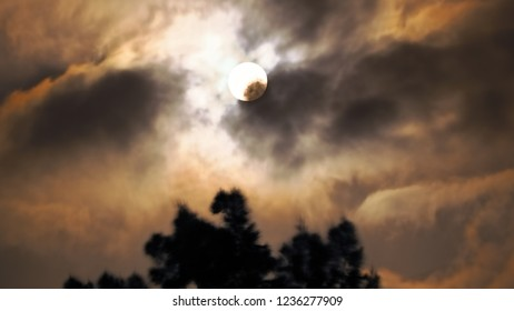 Full moon with cloud formations over the Taoropark in Puerto de la Cruz (Tenerife). Many light-flooded clouds in the sky in the color white to gray,