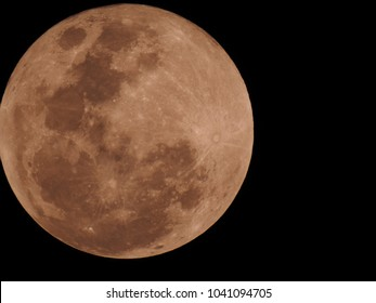 Full Moon in light brown color