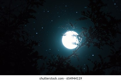 Full moon in night sky with stars.