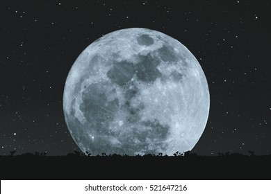 Full moon at night with stars with silhouette glass lawn. full moon background