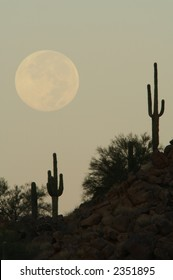 Full Moon Over Cactus