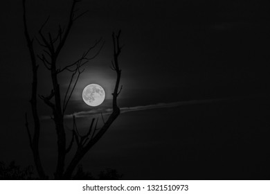 Full Moon, over the Highlands of West Virginia, USA