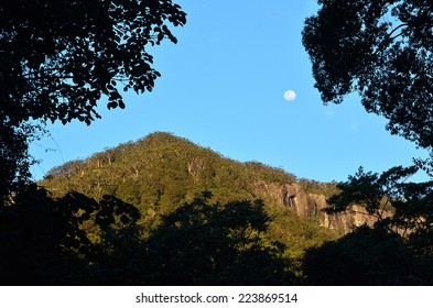 Full moon rise over Springbrook National Park in Queensland Australia.