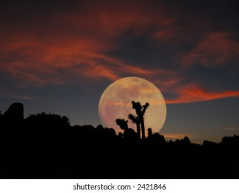 a full moon rises over joshua tree national park