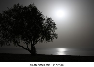 Full moon's moonlight gleaming in the sea at the beach of the Peloponnese, Greece