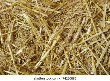 A full page of clean straw background texture
