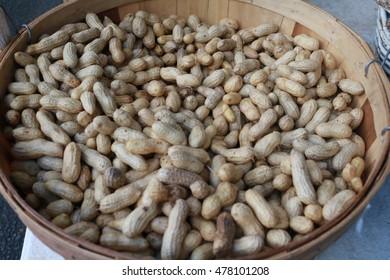 Full peck basket of peanuts