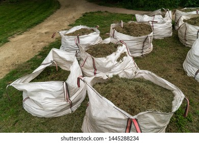 A full sacks in a row with cut grass. Gardening in public spaces