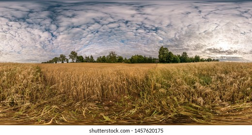 full seamless spherical hdri panorama 360 degrees angle view among harvested rye and wheat fields with Hay bales in summer day with beautiful cirrocumilus clouds in equirectangular projection