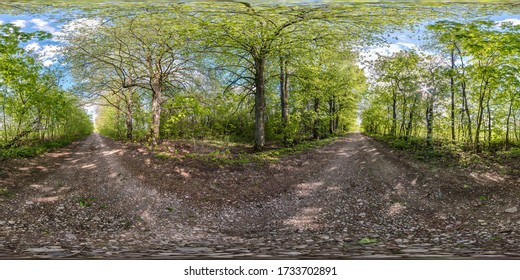 full seamless spherical hdri panorama 360 degrees angle view on no traffic gravel road among tree alley in summer day in equirectangular projection, ready  VR AR virtual reality content