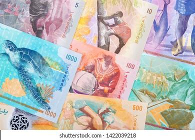 Full set of Maldivian money, a business background