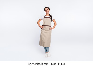 Full size photo of optimistic nice brown hair lady stand wear t-shirt apron isolated on grey color background
