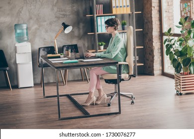 Full size profile side photo of focused girl sir desk chair work home laptop analyze start-up innovation progress report wear blazer jacket pants trousers high heels in workplace workstation