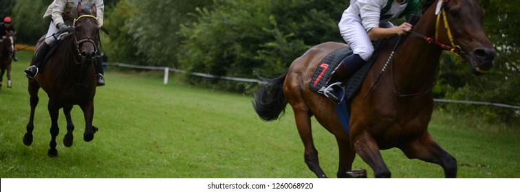 """full speed horse race on racecourse, beautiful and fast horse with number """"7""""  in front of horse racing track, the most famous and popular horses with empty space for text in the autumn background"""