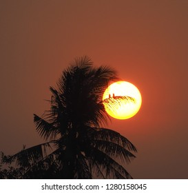 Full sun with sunset sky, sunset today and sunset tonight,Silhouette coconut palm trees on beach at sunset. Halloween concept