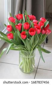 Full vase of red tulips