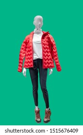 Full-length female mannequin dressed in fashionable clothes, isolated on green background. No brand names or copyright objects.