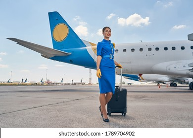 Full-length portrait of a smiling cute slim stewardess in uniform leaning on the suitcase handle