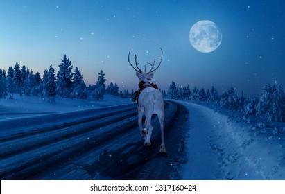 Fullmoon in Finnish Lapland