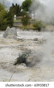 fumarole in Government Park of Rotorua in New Zealand