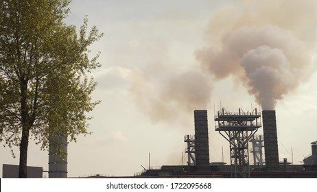 fuming smokestacks and trees with green foliage. copy space.