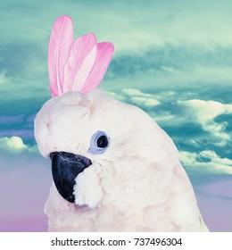Fun Art Collage Parrot Dreams Unicorn. Contemporary minimal art