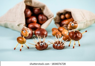 Fun autumn crafts concept. Using autumn fruits horse chestnuts and oak acorns to make fun animals, hedgehog, horse. Textile bags full acorns and chestnuts, blue studio background.