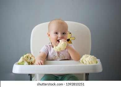 fun cute baby feed eat raw vegetables first time at home, cauliflower. Healthy child nutrition, Baby first solid feeding, baby 10 months in highchair eats by himself, self-feeding