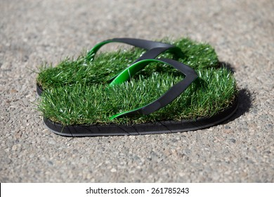 Fun pair of grass sandals at the gift shop at Descanso Gardens in Los Angeles on a sunny summer Sunday,