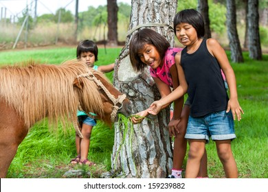 Fun portrait of native American girls feeding horse on farm.
