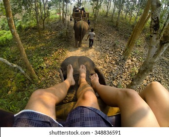Fun ride off the elephant carriage in Indonesia