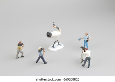 the fun tiny figure taking the video of Crane