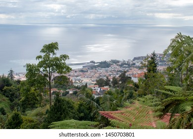 Funchal capital view and the Atlantic Ocean view from the tropical garden - Madeira - Portugal