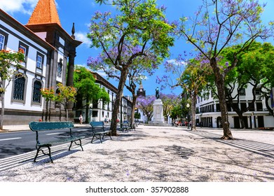 Funchal cityscape with main street at sunny summer day. Travel concept