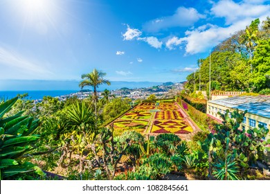 Funchal, Madeira, Portugal - March 22, 2018: Tropical Botanical Gardens in Funchal, capital of  Madeira island, Portugal