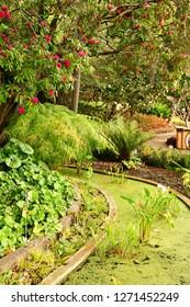 Funchal, Portugal - february 22 2018 : the botanical garden
