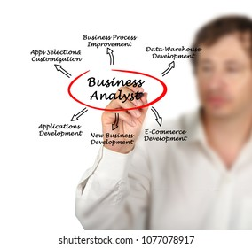 Functions of Business Analyst