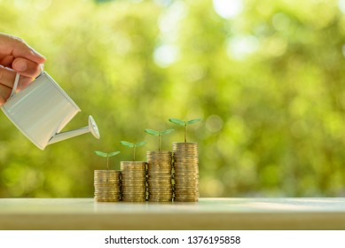 Fund investment / portfolio management for long term sustainable growth concept : Investor pours water from watering can, sprout on rows of rising coins, depicts money gain from financial investment.
