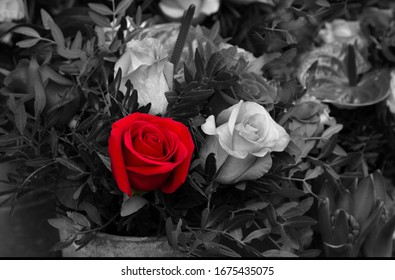 Funeral rose and calla flowers bouquet arrangement. Mourning background. Grief, memorial, sorrow, loss concepts. Selective focus. Retro toned vintage red black white aged photo.