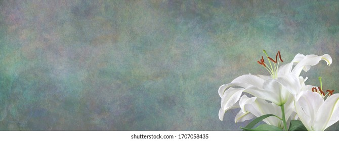 Funeral Wake Order of Service Lily Background - white lily head in bottom right corner against a wide jade green stone effect rustic background with copy space